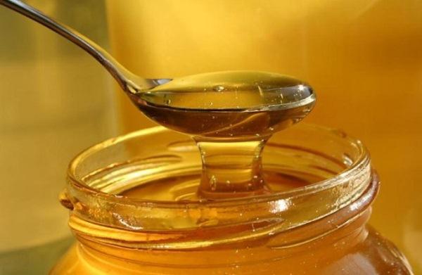 عسل الكزبرة