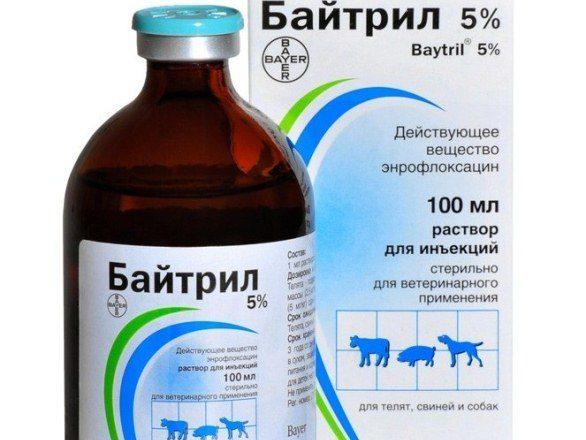5٪ حل Baytril